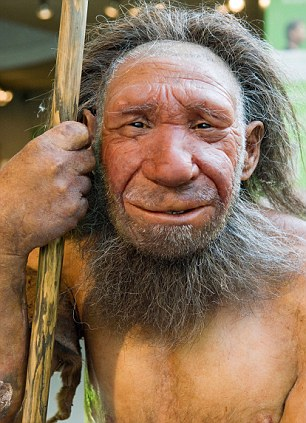 Lifelike figure of a Neanderthal Man in the Neanderthal Museum in Mettmann by Duesseldorf, Northrhine-Westphalia, Germany. Image shot 2006. Exact date unknown.